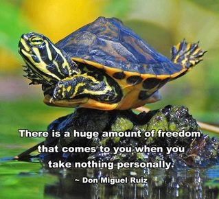 There is a huge amount of freedom that comes to you when you take nothing personally. ~Don Miguel Ruiz